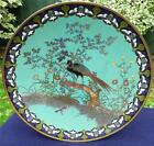 Rare Antique Japanese 19thC Meiji Cloisonne Charger - Peacock Amongst Flowers