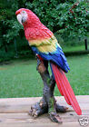 MACAW PARROT TROPICAL PET BIRD FIGURINE decoration ORNAMENT MEXICO 15 in.  NEW