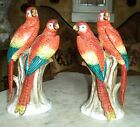 ANTIQUE GERMANY Sitzendorf Porcelain PAIR OF DOUBLE PARROT MACAW STUNNING RARE