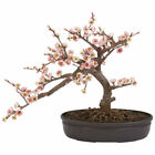NEW ARTIFICIAL SILK PINK FLOWER CHERRY BLOSSOM SMALL REALISTIC BONSAI TREE