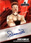 WWE Sheamus 2011 Topps Champions Authentic Autograph Card CASE HIT