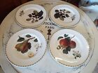 4  QUEENS CHINA HOOKER'S FRUIT DINNER PLATES ROYAL HORTICULTURAL SOCIETY NR