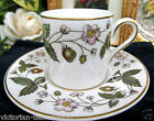 WEDGWOOD TEA CUP AND SAUCER DEMI STRAWBERRY HILL PATTERN COFFEE CAN