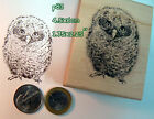 P83 Owlet baby owl rubber stamp