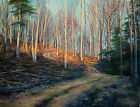 Original Oil on Canvas Morning Sun Forest Country Road Artwork Signed by Artist