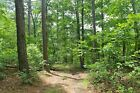 236 A MONTH TO OWN 8+ ACRES IN THE BEAUTIFUL MISSOURI OZARKS EASY TERMS