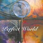 PERFECT WORLD - PERFECT WORLD USED - VERY GOOD CD