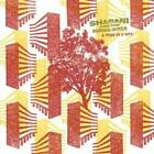 Shabani And The Burning Birds : A Tree in a City CD (2007) Fast and FREE P