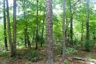 237 A MONTH TO OWN 5+ ACRES IN THE BEAUTIFUL MISSOURI OZARKS EASY TERMS