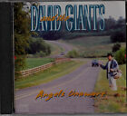 DAVID AND THE GIANTS:ANGELS UNAWARE