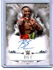 2016 Topps WWE Undisputed Wrestling Cards 12