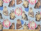 SNUGGLE FLANNEL CATS on LT BLUE 100 Cotton FabricNEW BTY