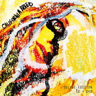 California Breed : California Breed CD Deluxe  Album with DVD 2 discs (2014)
