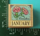 JANUARY CARNATION Rubber Stamp by HERO ARTS Flower of Month