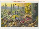 1999 Nature of America 33c Sc 3293 sheet of 10 Sonoran Desert