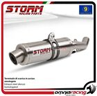 Storm GP Exhaust steel approved APRILIA TUONO Fighter 1000 02>05