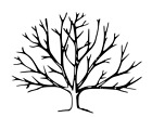 Bare Winter Tree unmounted rubber stamp nature Autumn Fall Halloween 24