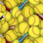 Sports Collection Softballs and Bats All Over Cotton Fabric Fat Quarter