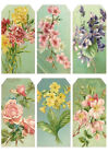 SET OF 12 15X325 FLORAL FLOWERS 57 GIFT HANG TAGS SCRAPBOOK CARDS