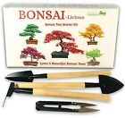 Bonsai Tree Kit Grow Your OWN Bonsai Trees from Seeds Great gift Idea Seed Kit