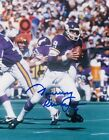Minnesota Vikings Collecting and Fan Guide 68
