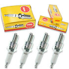 4pcs 2004 Gas Gas SM 50 NGK Standard Spark Plugs 50cc 3ci Kit Set Engine yx