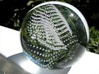 LARGE JOSH SIMPSON PLANET PAPERWEIGHT: Controlled Bubbles, 3.25