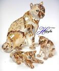 SOFIA (ANNUAL) AND AMUR LEOPARD CUBS SCS 2019 SWAROVSKI CRYSTAL  5428541 5428542