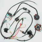 Ignition System set Kit Wiring Harness 5 Pin 4 stroke ATV 50CC 125CC Electrical