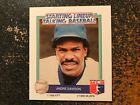 Andre Dawson Cubs 1988 Kenner Starting Lineup Talking Baseball CARD ONLY