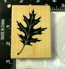 New 1999 PSX Oak Fall Leaf Wood Mounted Rubber Stamp Very Nice Detail