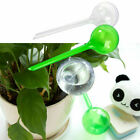 Self Watering Plant Bulb Plastic Water Feeder Globe Indoor Outdoor Automatic Lot