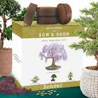 Natures Blossom Bonsai Tree Kit Grow 4 Types of Miniature Trees From Seed