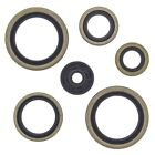 KTM EXE 125, 2000-2001, Engine Crank/Crankshaft / Oil Seal Set - EXE125