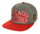 Chicago Blackhawks Collecting and Fan Guide 44