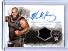 2015 Topps WWE Undisputed Wrestling Cards 19