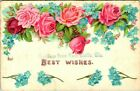 C36 3286 1900 10S BEST WISHES GREETING POSTCARD