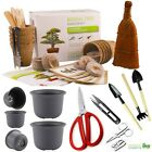 BONSAI TREE KIT Grow 6 types seeds Gardening Gift Set plus Bonsai tools