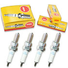 4pcs 2009 Gas Gas Wild HP 515 NGK Standard Spark Plugs 515cc 31ci Kit Set do