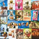 Lot of 20 DOG LOVERS Avanti Greeting Cards 15 BIRTHDAY + Thanks TOY Get Well +