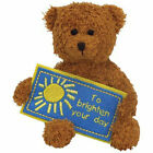 TY Beanie Baby - TO BRIGHTEN YOUR DAY the Bear (Greetings Collection) (5 inch)