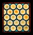 Fantastic French Rondels Antique Stained Glass Window