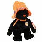 TY Beanie Baby - POCUS the Halloween Bear (BBOM October 2005) (8.5 inch) - MWMTs