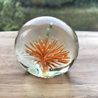 Orange Sea Urchin Vintage Paperweight 6cm Wide