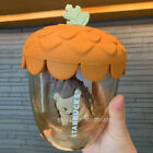 Starbucks 2021 China Autumn Forest Acorn Hedgehog Tea Infuser Double Glass Cup