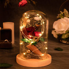 Enchanted Rose Flowers Red Eternal Dried Rose With Led Light In Glass Dome