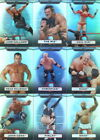 WWE TOPPS PLATINUM 2010 COMPLETE PARALLEL REFRACTOR CARD SET OF 125