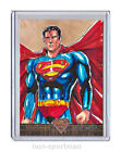 2013 Cryptozoic Superman: The Legend Trading Cards 20