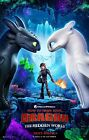 HOW TO TRAIN YOUR DRAGON HIDDEN WORLD 2019 Advan DS 2 Sided 27X40