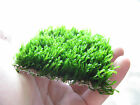 2pc Flame Moss pad 77cm Live aquarium plants water low light kh moos tank